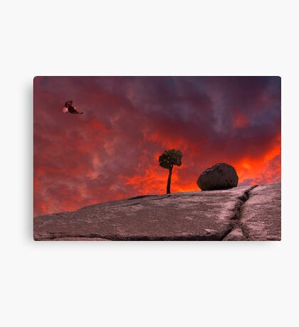 The Passion of Nature Canvas Print