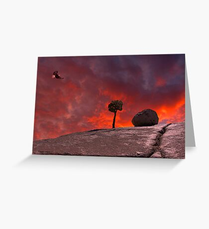 The Passion of Nature Greeting Card