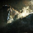 Steam in a dream by Alan Mattison