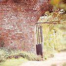 Brick Wall by babibell