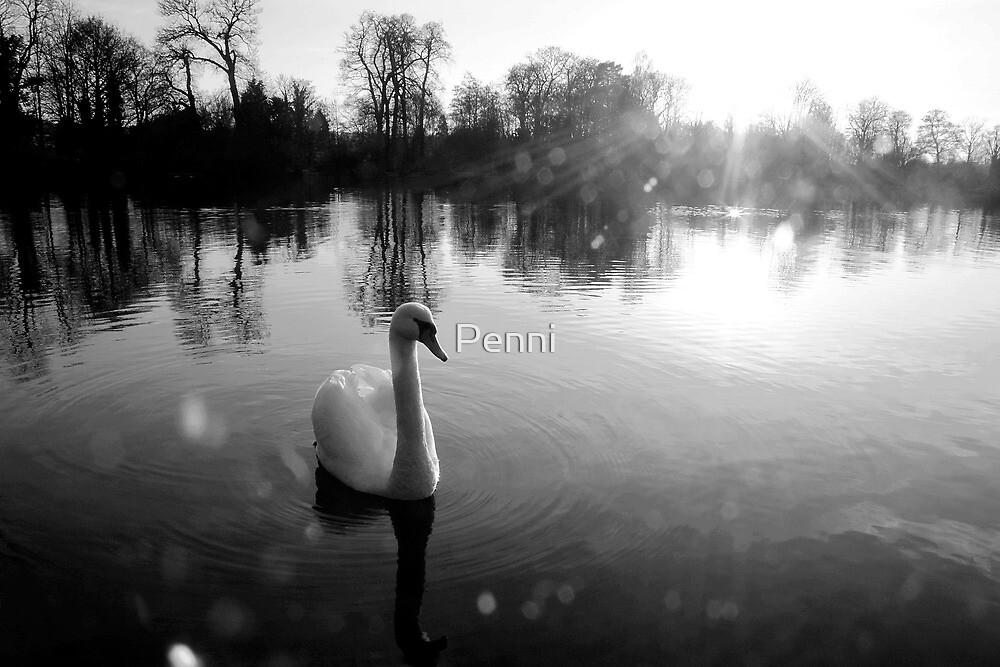 Crystal swan by Penni
