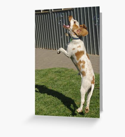 Timmy likes catching soap bubbles Greeting Card