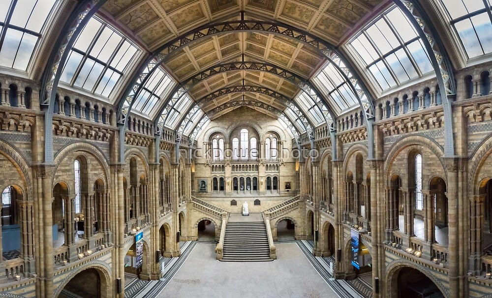 Natural History Museum - Hintze Hall by nickpowellphoto