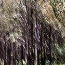 Bush lands #05 by LouD