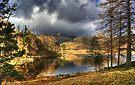 Blea Tarn Revisited by Jamie  Green