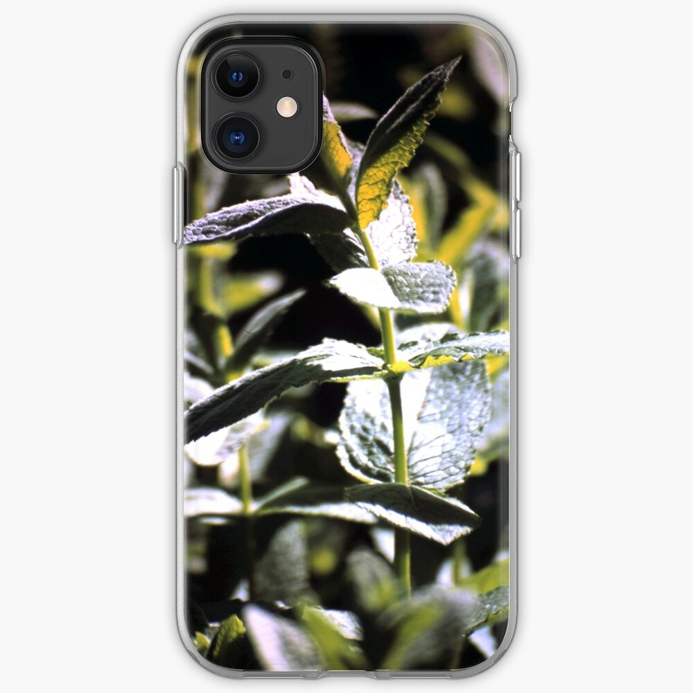 Pfeffer-Minze iPhone-Hülle & Cover