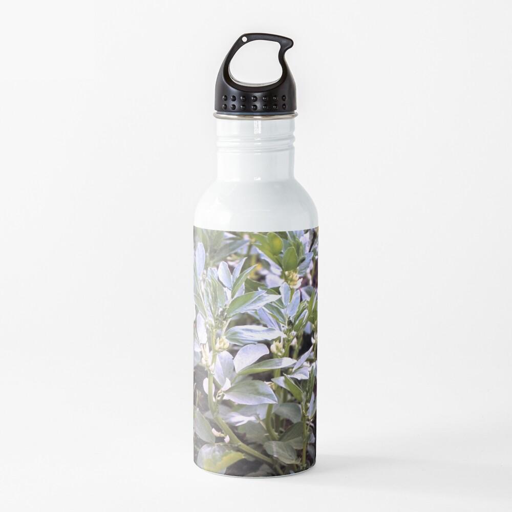 Die Puff-Bohnen Trinkflasche