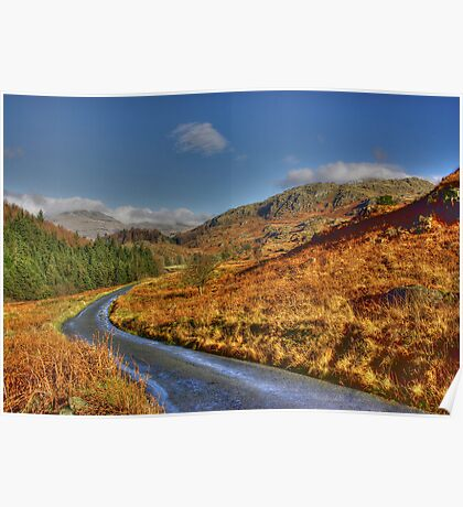Duddon Valley Road  - Lake District Poster