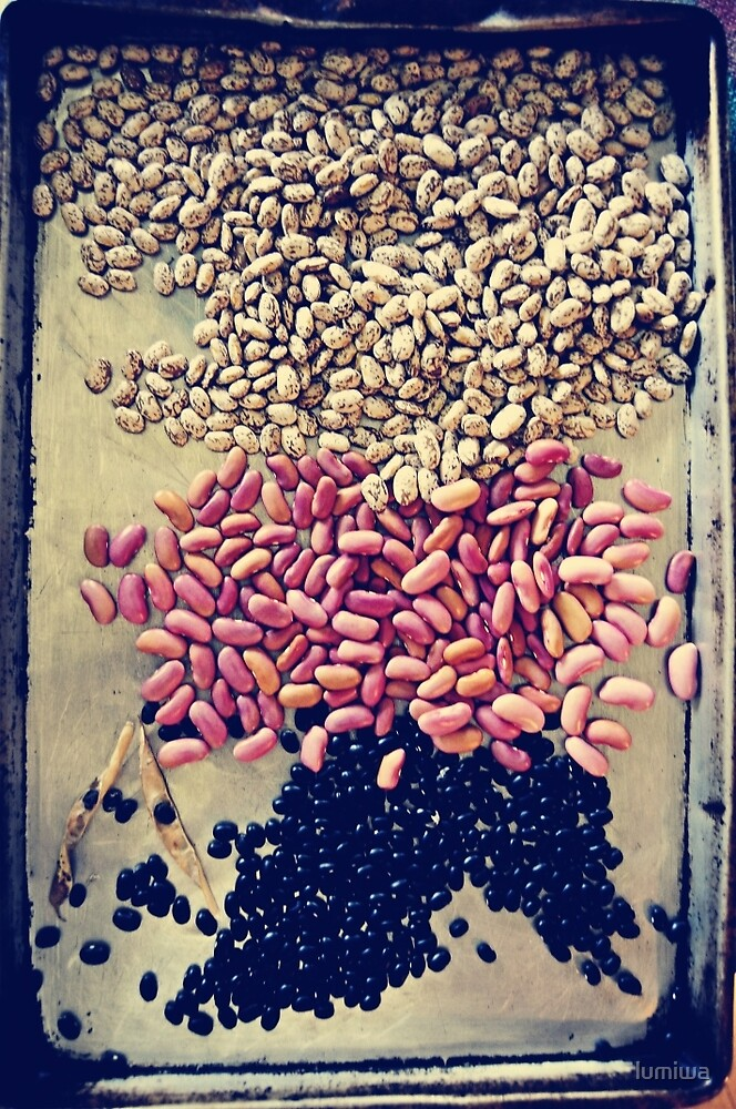 The beans by lumiwa