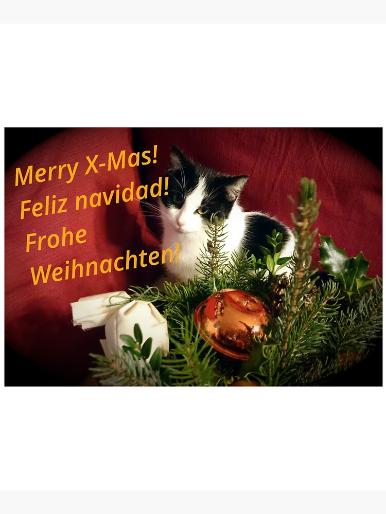 Katze Lilli mag Weihnachten - Merry XMas! von Gourmetkater