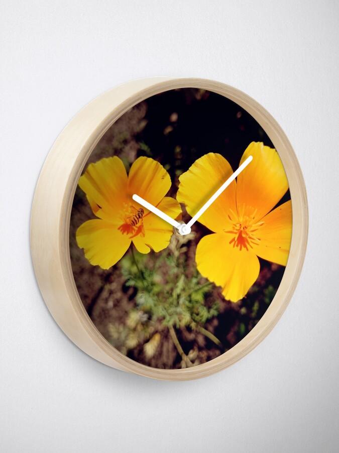 Alternative Ansicht von Kalifornischer Mohn Uhr