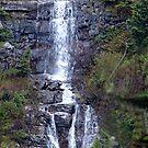 Delicate Waterfall by Jann Ashworth