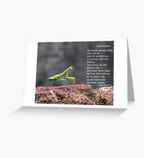 Soenbekkie Greeting Card