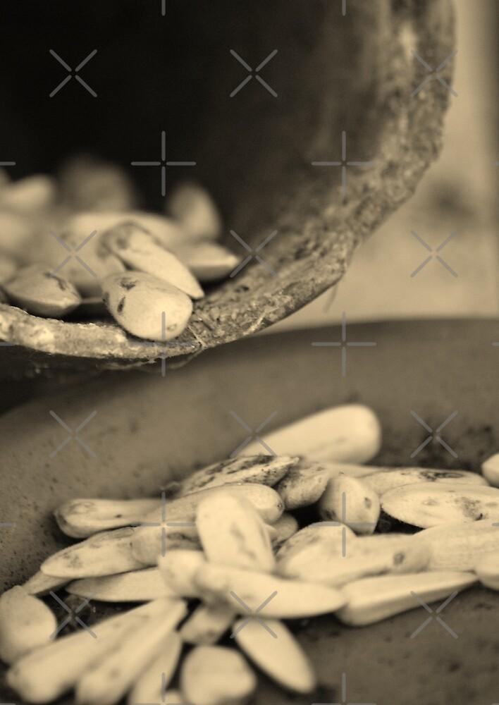 Sunflower seeds by SweetLemon