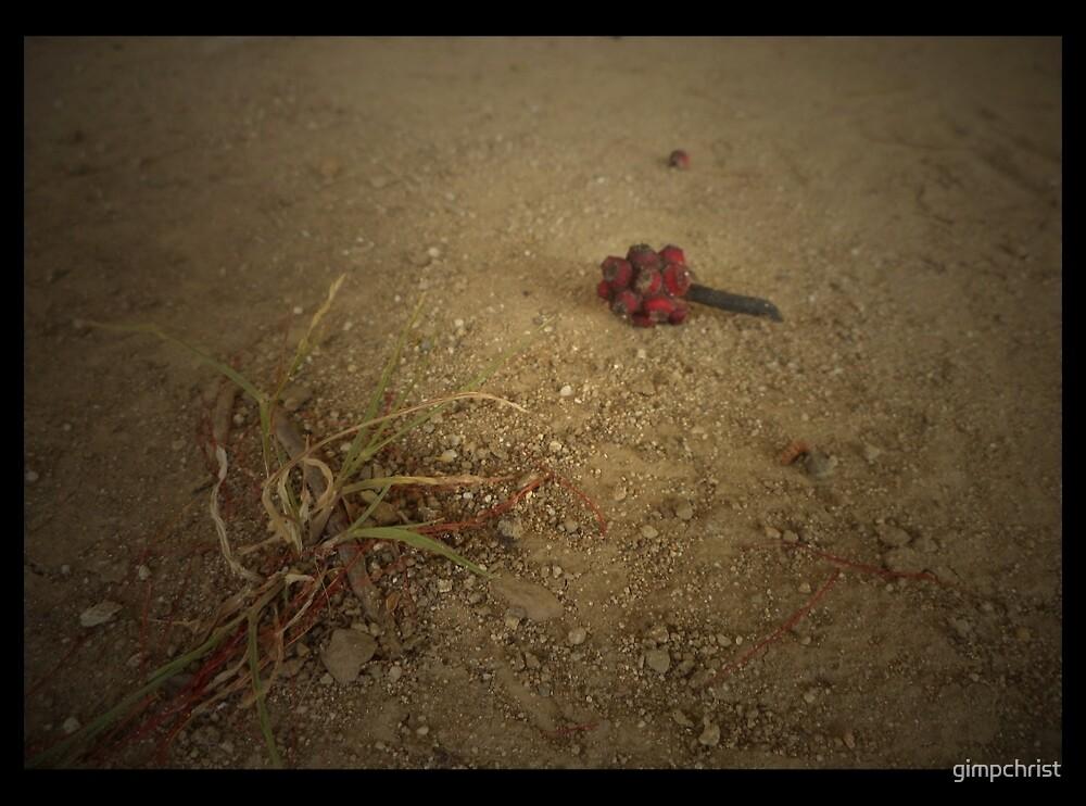 Desert Thirst & The Lonliness by gimpchrist