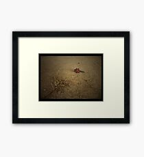 Desert Thirst & The Lonliness Framed Print