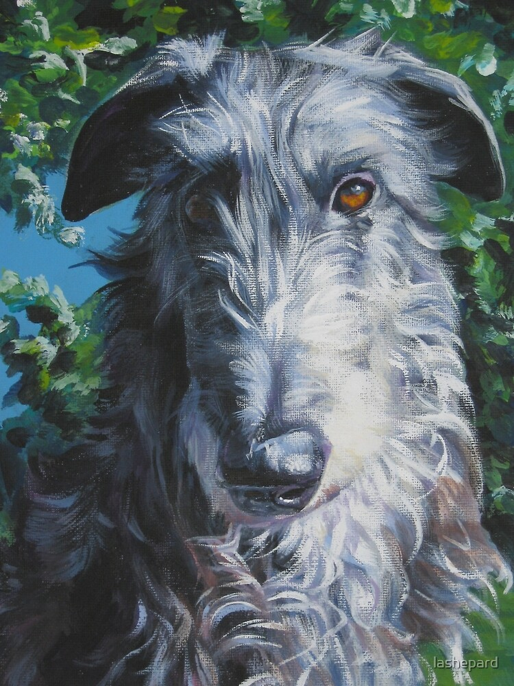 Scottish Deerhound Fine Art Painting by lashepard