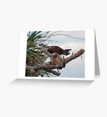 SC ~ WO ~ RAPTOR ~ Eastern Osprey by David Irwin 131019 Greeting Card