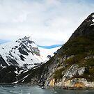 Wild Places of  Alaska - Kenai Fjord  by Barbara Burkhardt