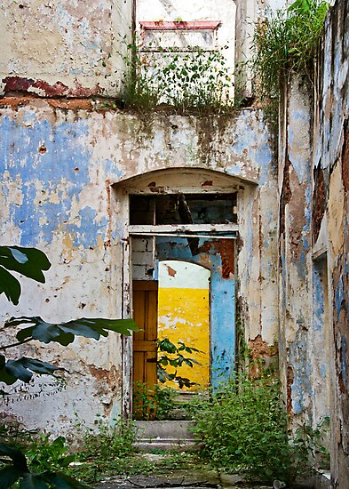 Beautiful Decay by Lynnette Peizer