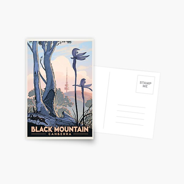 Black Mountain Nature Reserve (ants and orchids) Postcard