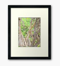 Kate Hutchinson's 'The Enchanted Forest' Framed Print