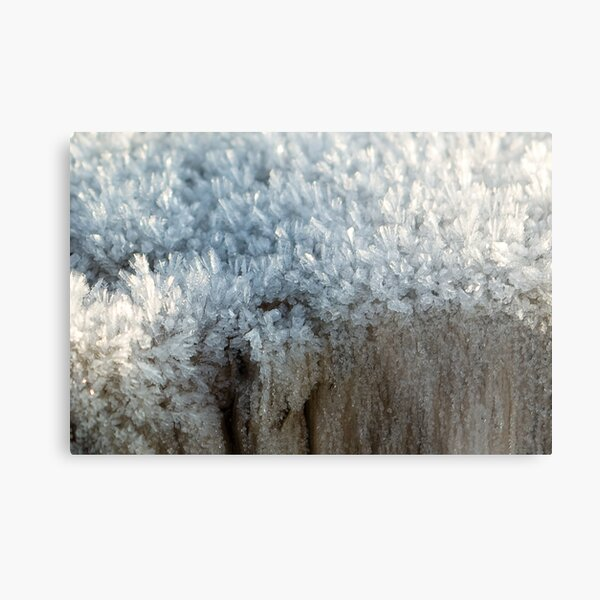 Fascinating ice crystals 3 Metal Print
