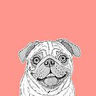 Pug Dog Portrait ( coral background ) by Adam Regester