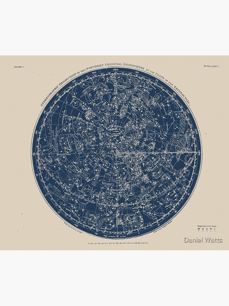 Constellations of the Northern Hemisphere Vintage Azure Blue by DanJohnDesign