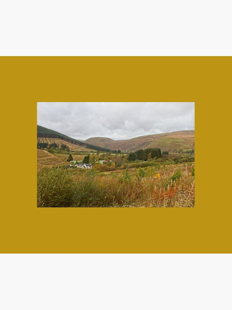 Ettrick Valley Landscapes, Scottish Borders by robcole