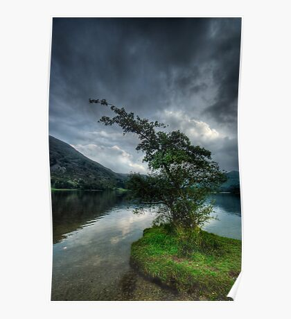 Ullswater Tree Poster