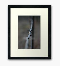 Marengo Farm Framed Print