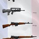 Modern Service Rifles of France by nothinguntried