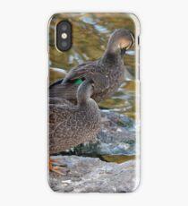 Preening Ducks iPhone Case/Skin