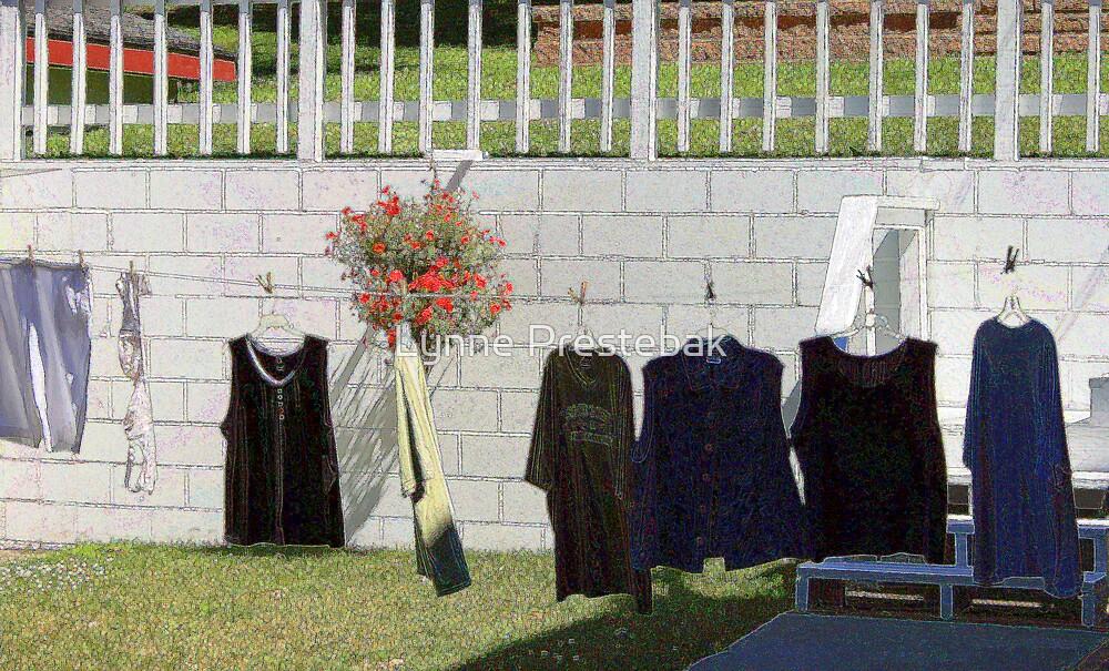 the clothesline by Lynne Prestebak