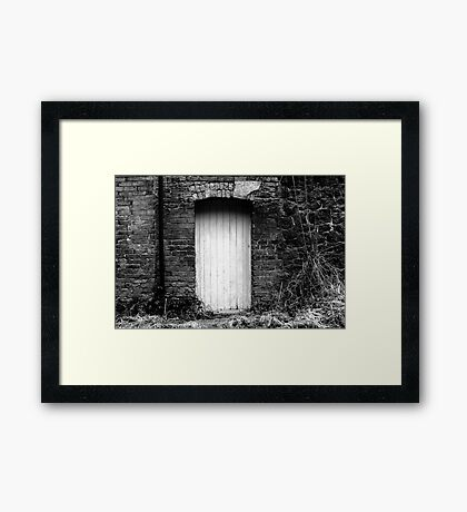 Door To... Framed Print