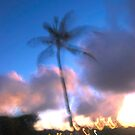 Palm Induction  by linaji