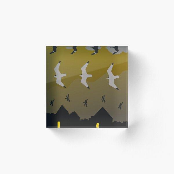Franklin Gulls Acrylic Block