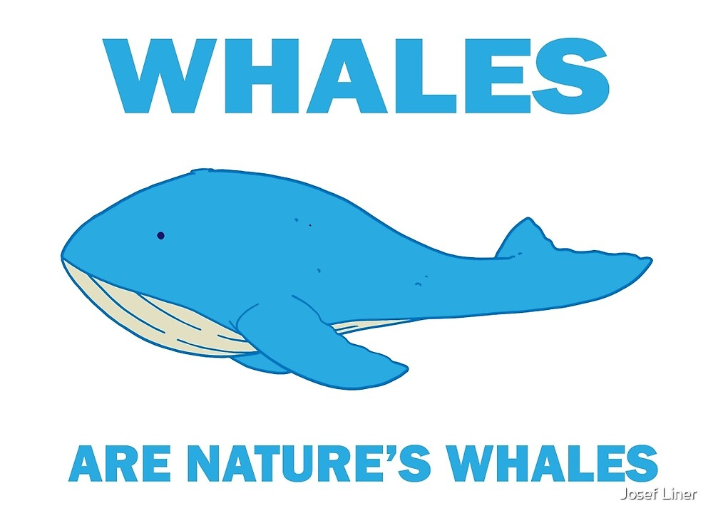 Whales Are Nature's Whales by Josef Liner