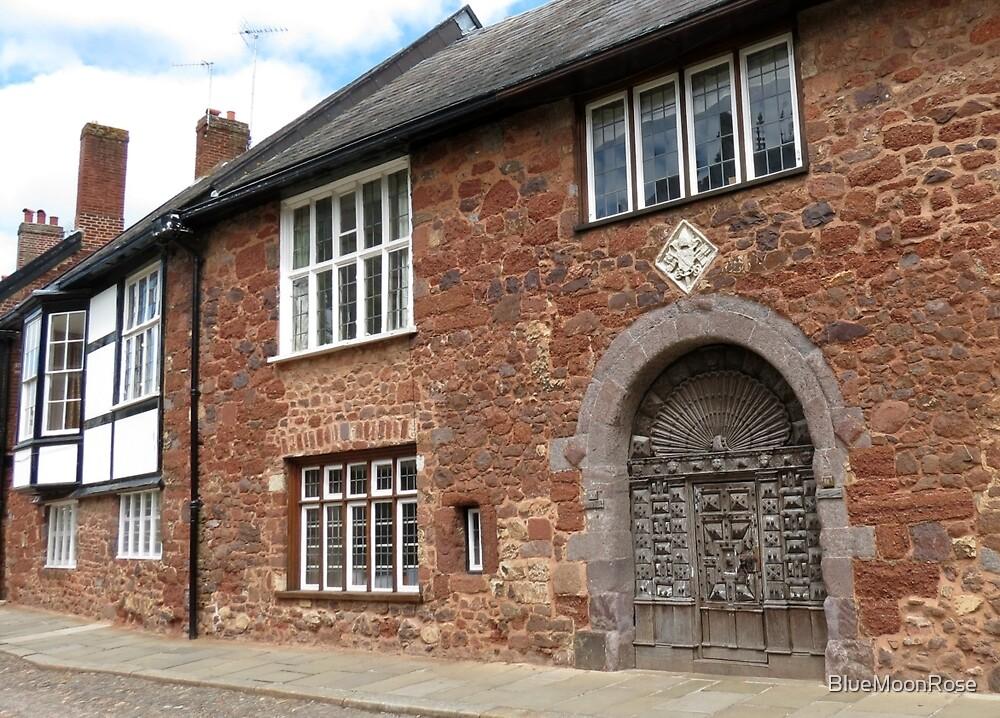 Ancient Door, Exeter von BlueMoonRose