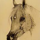Desert Bred by Catherine  Howell