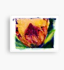 """Furry Flower"" Canvas Print"
