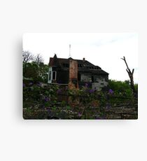 Life among Destruction Canvas Print