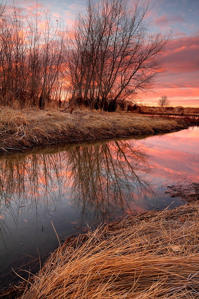 Water Color by Bob Larson