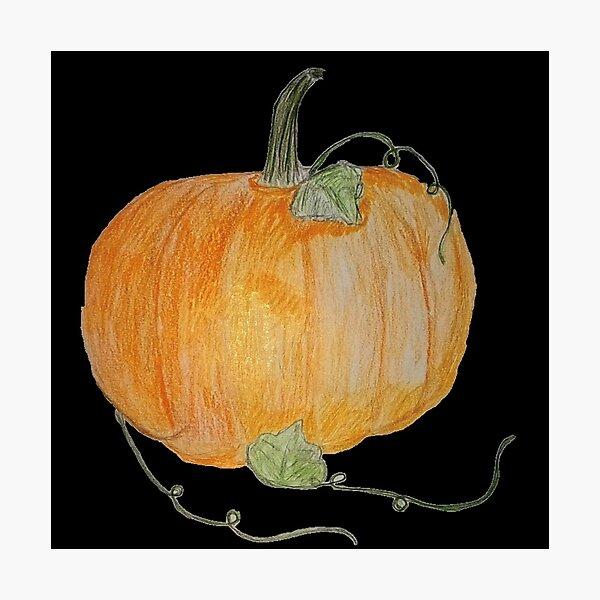 Pumpkin #04 Photographic Print
