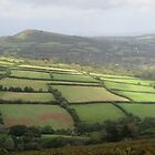 Patchwork Of Fields From Ugborough Beacon by lezvee
