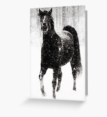 Horse in Snow Greeting Card