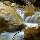 Cool Creek by brian watkins