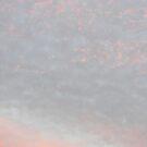 Fairy Floss Clouds by minikin