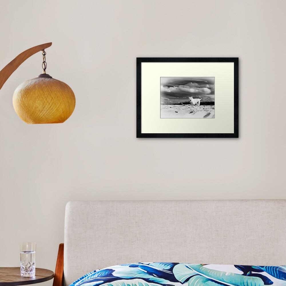 Shannon Framed Art Print